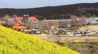 Trang trại Mother Farm