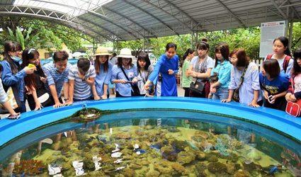 Du lịch Nha Trang ngắm bể nuôi ngoài trời